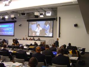 Defend-International-Dr-Widad-addressing-UN-BMS2010_T