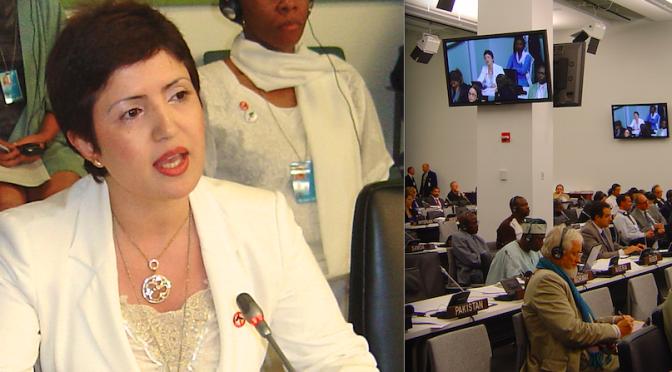 DI At 2010 UN BMS & UNGA Meetings With NGOs