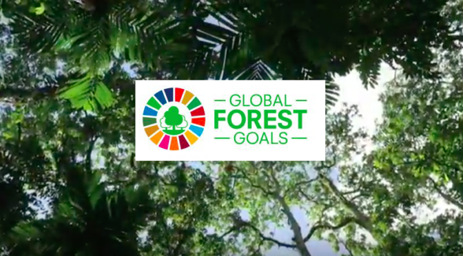 United Nations Strategic Plan for Forests 2017-2030
