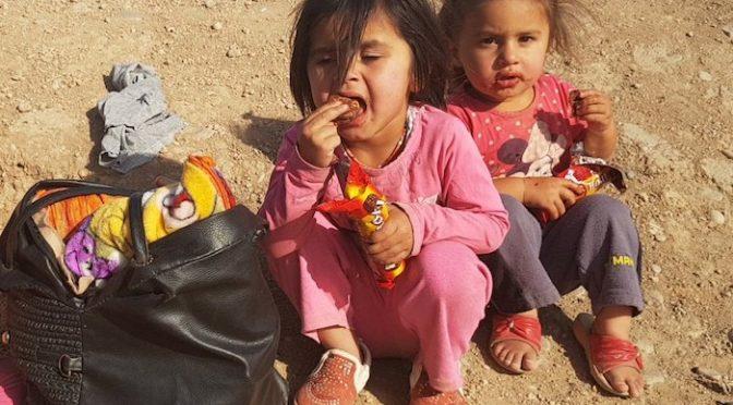 DI Alarmed Over New Crisis in Kurdistan Region and Iraq