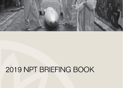 NEW PUBLICATION: 2019 NPT BRIEFING BOOK